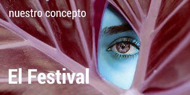 El Festival. Nuestro concepto